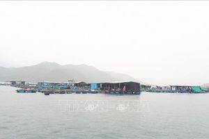 Cấm mặc cấm, các bè nổi vẫn kinh doanh trên vịnh Nha Trang