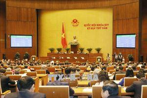 Nhân quyền và an ninh mạng ở Việt Nam – cần có quan niệm rạch ròi