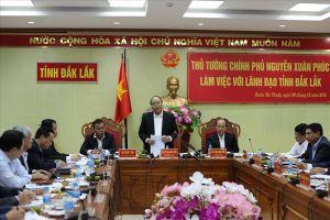 Thủ tướng: Không để Đắk Lắk trở thành vùng đất sa mạc hóa