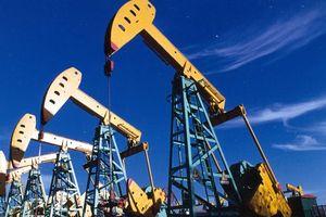 Lần đầu tiên Mỹ trở thành nhà xuất khẩu ròng về dầu mỏ trong 75 năm