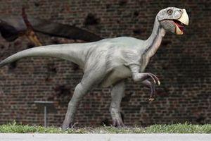 Bị bắt vì thừa nhận... giết chết khủng long