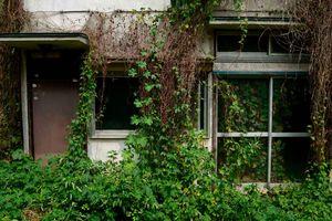 Chuyện lạ Nhật Bản: Nhà cho không, dân vẫn không thèm ở