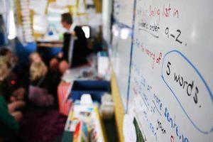 New Zealand: Đề xuất đổi mới giáo dục toàn diện