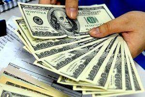 Vụ mua bán 100 USD ở Nghệ An: Hai tiệm vàng bị xử phạt 170 triệu đồng