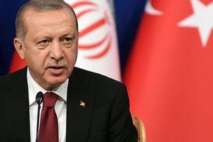 Tổng thống Erdogan: Phong trào 'áo vàng' cho thấy nền dân chủ của châu Âu đã thất bại