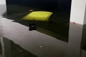Nhiều chủ xe khóc ròng vì xe sang chìm trong hầm chung cư