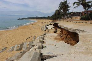 Kè biển 80 tỷ sau vài tháng sử dụng đã hỏng