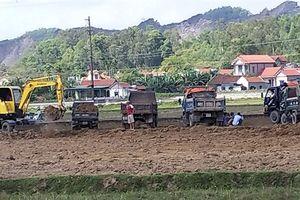 Hàng chục ô tô chở đất ruộng đi bán, xã không hay biết?