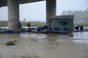 Quảng Nam: 40 lồng cá bị lũ cuốn, phố cổ Hội An khốn đốn vì mưa ngập