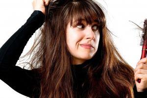 Hướng dẫn 3 cách trị rụng tóc hiệu quả tại nhà bằng nguyên liệu thiên nhiên