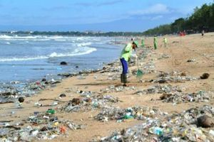 Xây dựng kế hoạch hành động quốc gia quản lý rác thải nhựa đại dương