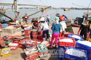 Kinh tế biển Thừa Thiên - Huế: Phát triển mạnh nhờ đầu tư đúng hướng
