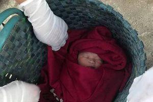 Phát hiện bé sơ sinh bị bỏ rơi bên đường, mặt sưng tấy vì kiến cắn