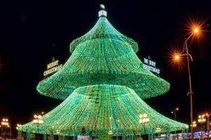 Cây thông Noel xa xỉ giá từ 25 đến trên 100 triệu đồng