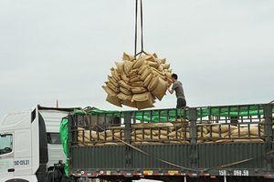 Tín hiệu vui cho xuất khẩu gạo