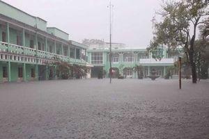 Học sinh Đà Nẵng, Quảng Nam và Quảng Ngãi được nghỉ học ngày 10/12 do mưa lớn