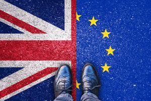 Chính phủ Anh có thể đơn phương đảo ngược quyết định rời Liên minh châu Âu