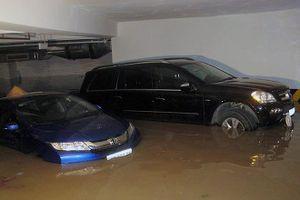 Các hãng bảo hiểm chạy hết công suất vì ngập lụt tại Miền Trung