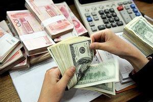 Tỷ giá ngoại tệ 11.12: USD tự do đi ngang, đồng Euro giảm sốc