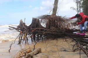 Điều tiết lũ qua tràn và tuabin hồ thủy điện lớn nhất Thừa Thiên – Huế