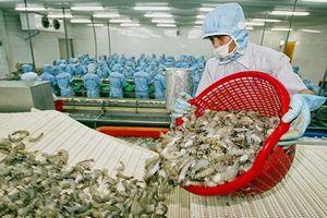 Doanh nghiệp đẩy mạnh mở rộng thị trường xuất khẩu tôm