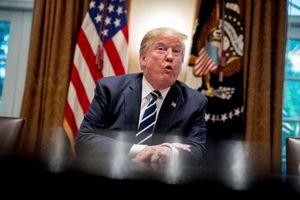 Donald Trump ngày càng nguy cấp trong nghi án Nga can thiệp bầu cử Mỹ