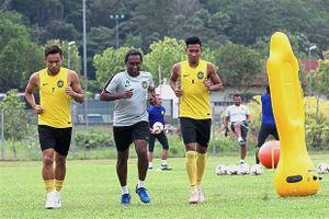 'Trưởng lão' AFF Cup ẩn mình trong đội tuyển Malaysia