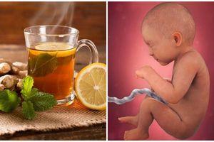 Uống 1 cốc trà gừng theo cách này, mẹ bầu KHỎI TIỆT cảm cúm, lại còn tăng lượng máu cung cấp cho thai nhi