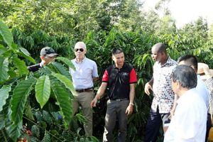 Gắn kết với nông dân vì chất lượng cà phê Việt
