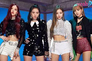 Black Pink bị gần 100 nghìn người kí tên kêu gọi tẩy chay quảng cáo và concert tại Indonesia vì một lí do bất ngờ
