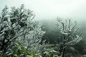 Phía Đông Bắc Bộ nhiệt độ đang giảm thấp
