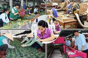 Doanh nghiệp Việt vẫn kém trong việc nắm bắt cơ hội từ các FTA