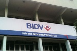 Bất chấp công ty Dương Giang thua lỗ, BIDV Ninh Bình vẫn cho vay trăm tỷ đồng