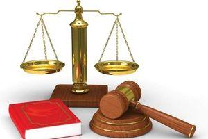 Bình Dương thành lập tòa án chuyên trách trực thuộc TAND các cấp