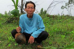 Quảng Bình: Nghi án phá tài sản, hành hung người để tranh giành đất