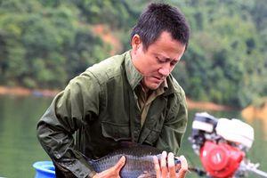 Nghệ An: Đổi đời nhờ nuôi những loài cá đặc sản trên hồ Hủa Na