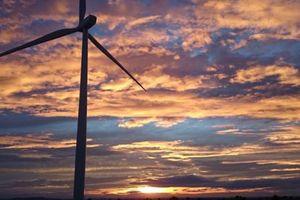 Tập đoàn Enel bắt đầu xây dựng trang trại gió 244 megawatt ở Mexico