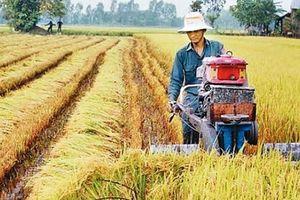 Liên kết '6 nhà' đẩy mạnh sản xuất nông nghiệp