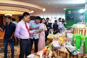 Các tỉnh, thành phố phía Nam: Chủ động tìm cơ hội hợp tác với Trung Quốc