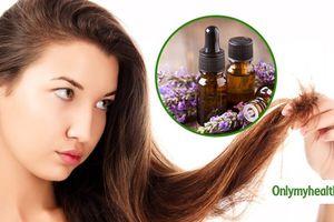 Mát xa với những loại tinh dầu này để ngăn ngừa rụng tóc