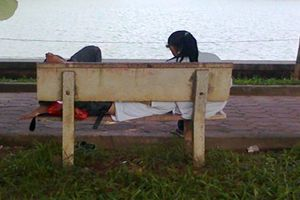 Vào công viên tâm sự, đôi nam nữ bị cướp ở TP.HCM