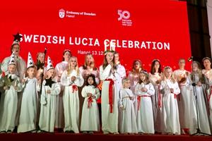 Đón Giáng sinh sớm cùng người Thụy Điển tại Lễ hội Lucia