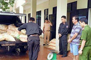 Chất cực độc cyanua liên tục 'tuồn lậu' vào Quảng Nam