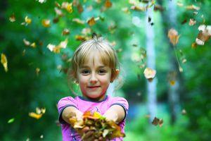 Sống nơi nhiều cây xanh giúp giảm nguy cơ bệnh tim và đột quỵ