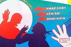 Chưa có tỉnh thành nào lập được cơ sở hỗ trợ, tư vấn về phòng chống bạo lực gia đình theo đúng quy định