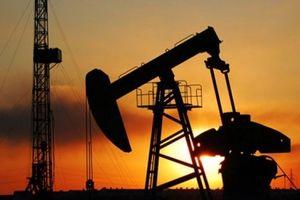Giá dầu thế giới 13/12: 'Nóng' chuyện dư nguồn cung, giá dầu lại quay đầu giảm