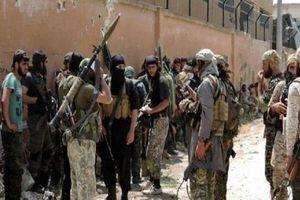 Hàng trăm khủng bố rầm rập kéo tới Idlib, lực lượng Hổ Syria sẵn sàng nghênh chiến