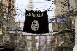 Chiến sự Syria: IS hứng chịu tổn thất nặng nề khi mất đi một nửa 'thành trì' Hajin