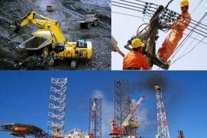Sự tham gia của nhà đầu tư tư nhân vào khu vực DNNN còn hạn chế