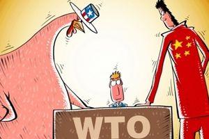 Quốc tế chỉ trích 'Mỹ làm đình đốn WTO'